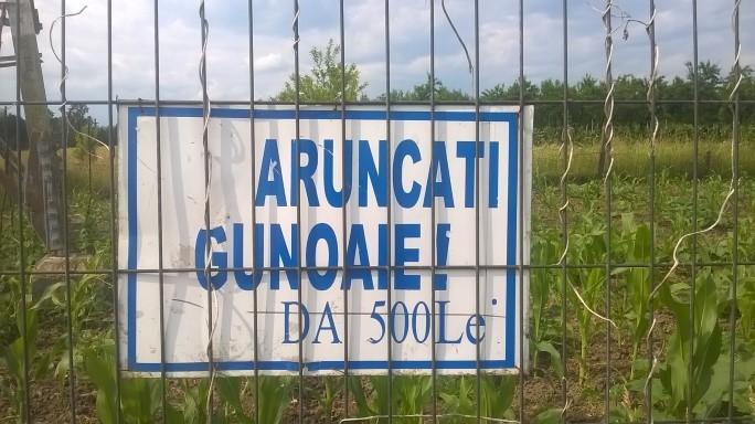 Gunoaie